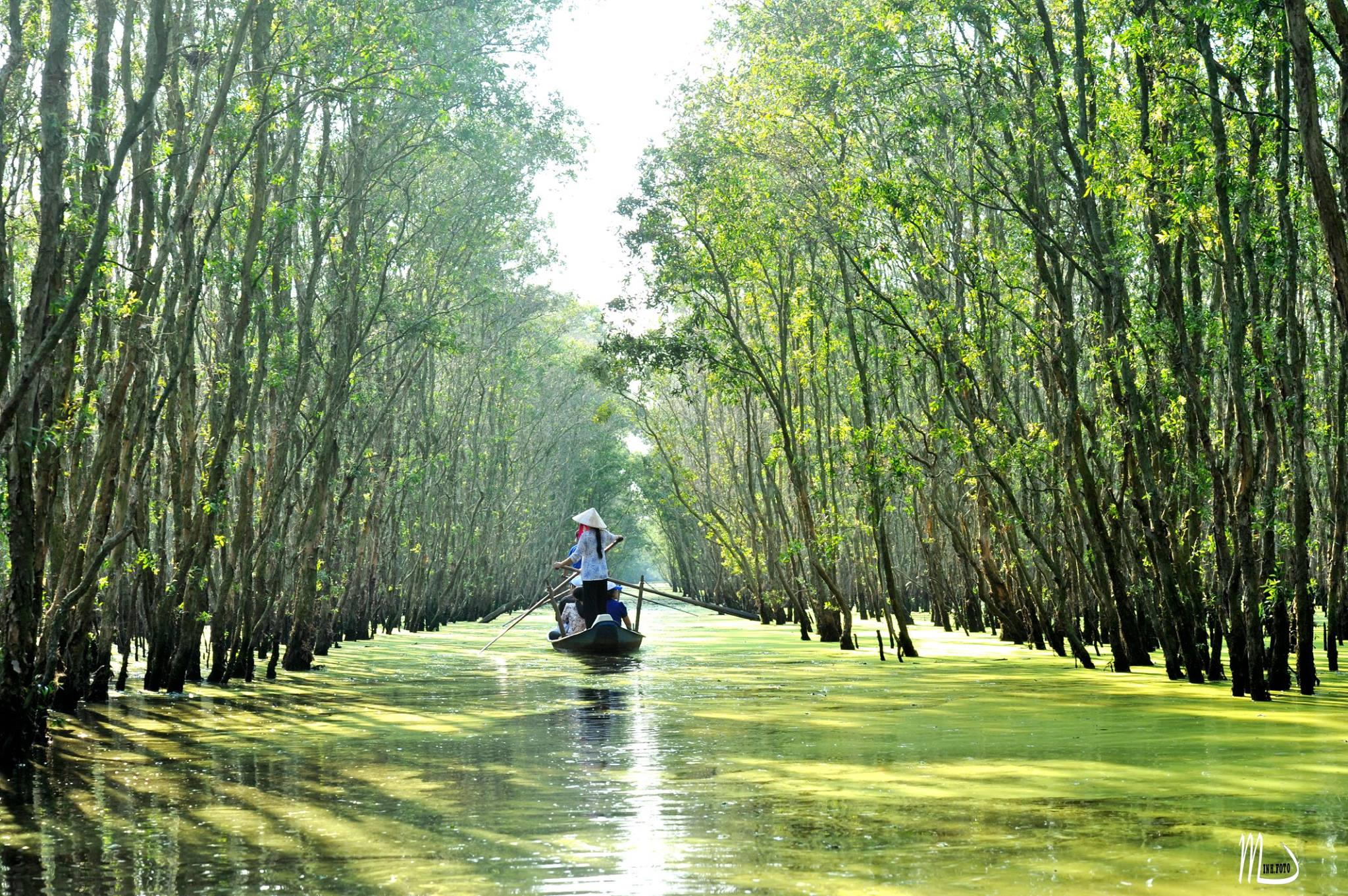 Mekong Delta Cruise & Homestay 2 days / 1 night